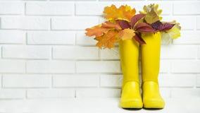 秋天概念以走的黄色胶靴在多雨天气 图库摄影