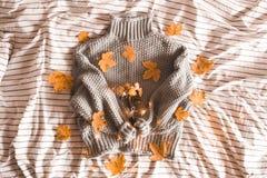 秋天概念查出的白色 被编织的舒适毛线衣特写镜头 免版税库存图片