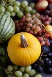 秋天概念用季节性水果和蔬菜 免版税库存图片
