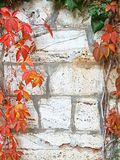 秋天概念背景 与拷贝空间的平的位置 图库摄影
