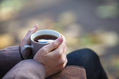 秋天概念-在公园长椅的秋天妇女饮用的咖啡下 库存图片