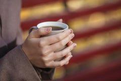 秋天概念-在公园长椅的秋天妇女饮用的咖啡下 免版税库存图片