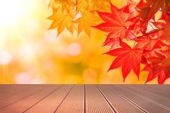 秋天槭树叶子和木地板 免版税库存图片