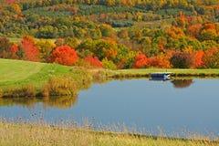 秋天槭树和池塘 免版税库存照片