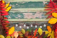 秋天槭树离开在老绿色木背景与拷贝空间和文本11月 免版税库存图片