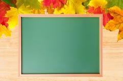 秋天槭树离开在木纹理和学校黑板 库存照片