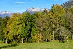 秋天横向山日出 免版税库存图片