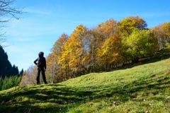 秋天横向山日出 库存照片