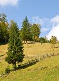 秋天横向山 库存照片