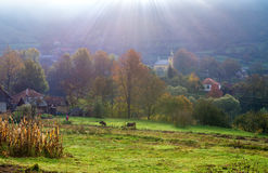 秋天横向早晨ural的俄国 库存图片