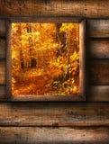 秋天横向视图视窗 免版税库存照片
