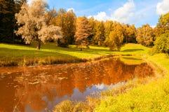 秋天横向 在河的河岸的秋天树在晴天 免版税图库摄影