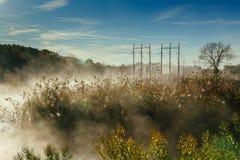 秋天横向 小森林的河 免版税库存图片