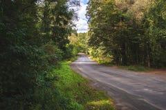 秋天横向 森林公路在一个晴天 库存照片