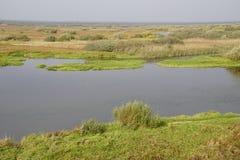 秋天横向 洪泛区和河Berezina 晴天在10月 库存照片