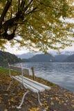 秋天横向 由Bled湖的白色长凳 免版税库存图片