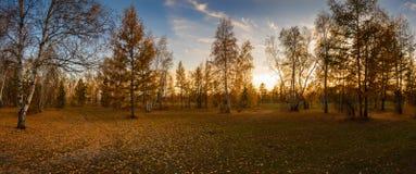 秋天横向 美丽如画的地方的全景 图库摄影