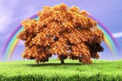 秋天横向 库存图片
