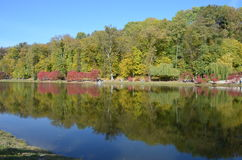 秋天横向 库存照片