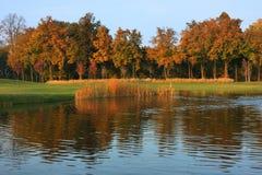 秋天横向 图库摄影