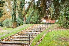 秋天横向 Parc de Scherdermael,安德莱赫特,比利时 图库摄影