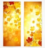 秋天横幅的收集 免版税库存照片