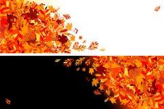 秋天横幅设计您的叶子 库存例证