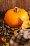 秋天橙色南瓜和叶子 免版税图库摄影
