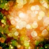秋天橙色和绿色Bokeh 免版税库存图片