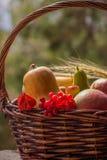 秋天水果和蔬菜在篮子在庭院里 季节 免版税库存照片