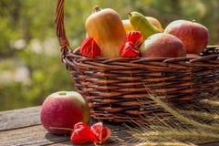 秋天水果和蔬菜在篮子在庭院里 季节 免版税库存图片