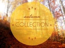 秋天汇集概念性创造性的例证 免版税图库摄影