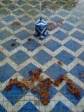 秋天浮动的叶子 库存照片
