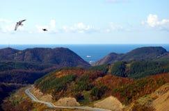 秋天海岛横向山萨哈林岛 免版税图库摄影