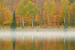 秋天海岸线Alberta湖 图库摄影