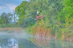 秋天海岸线Whitford湖 免版税库存图片