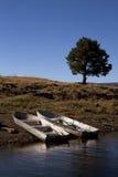 秋天渔船在亚利桑那 免版税库存图片