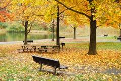 秋天湖叶子公园结构树 免版税图库摄影