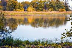 秋天湖横向拉脱维亚 免版税库存图片
