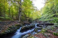秋天瀑布在保加利亚 库存图片