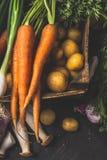 秋天烹调在黑暗的土气背景,顶视图的鲜美素食主义者的收获菜 图库摄影