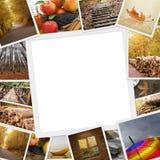 秋天照片的汇集 图库摄影