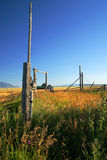 秋天牧场地 库存图片