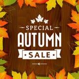 秋天特殊的拍卖葡萄酒在木背景的印刷术海报 免版税图库摄影