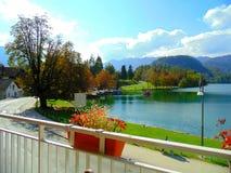 秋天甚而草绿色留下橙色平静的视图天气 免版税库存照片