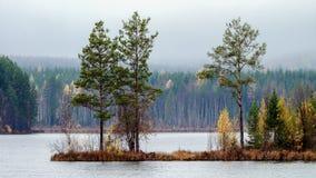 秋天甚而草绿色留下橙色平静的视图天气 免版税库存图片