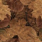 秋天生叶无缝的样式 库存图片