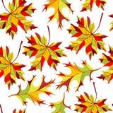 秋天生叶无缝的装饰品 向量例证