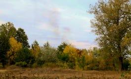 秋天生活本质上 库存照片