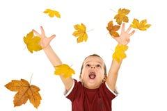 秋天男孩下跌的叶子到达 免版税库存图片
